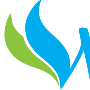 Apex Wellness: Logo